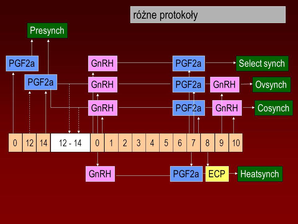 różne protokoły Presynch PGF2a GnRH PGF2a Select synch PGF2a GnRH