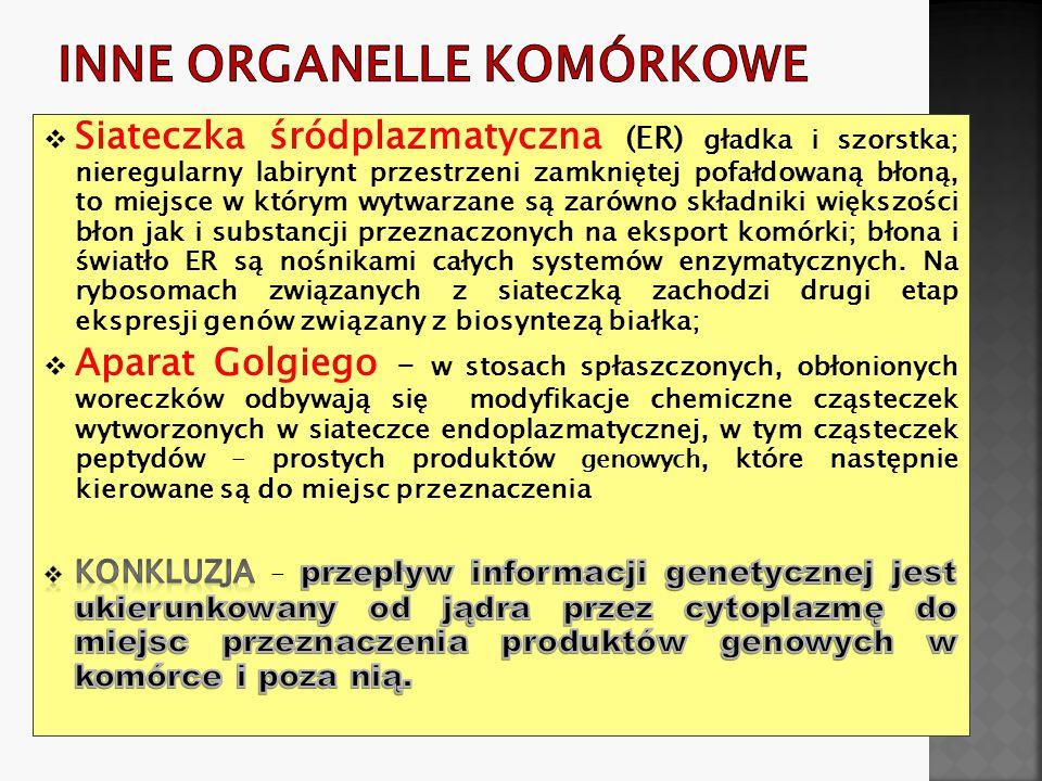 Inne organelle komórkowe