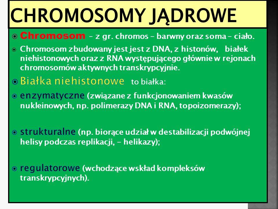 Chromosomy jądrowe Białka niehistonowe to białka: