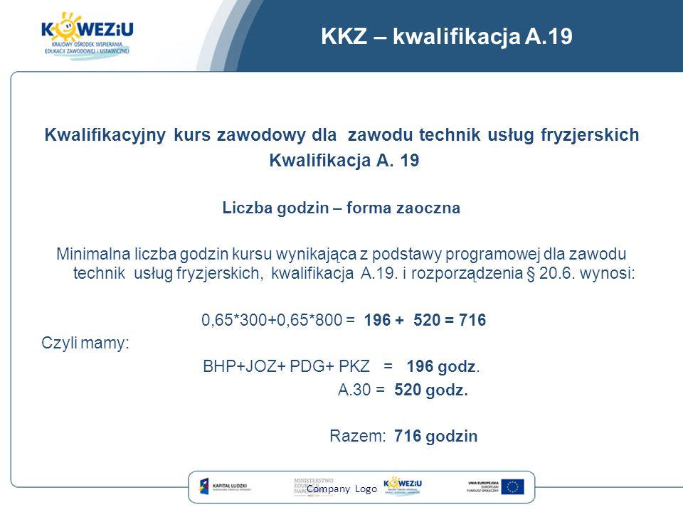 KKZ – kwalifikacja A.19 Kwalifikacyjny kurs zawodowy dla zawodu technik usług fryzjerskich. Kwalifikacja A. 19.