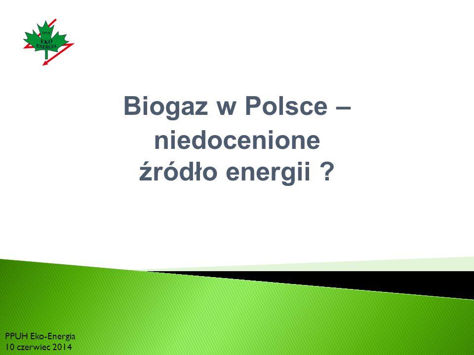 Biogaz w Polsce – niedocenione źródło energii