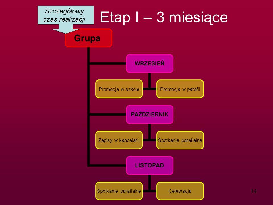 Szczegółowy czas realizacji Etap I – 3 miesiące