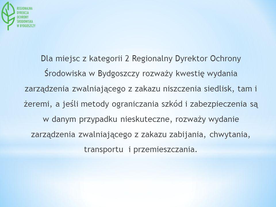 Dla miejsc z kategorii 2 Regionalny Dyrektor Ochrony Środowiska w Bydgoszczy rozważy kwestię wydania zarządzenia zwalniającego z zakazu niszczenia siedlisk, tam i żeremi, a jeśli metody ograniczania szkód i zabezpieczenia są w danym przypadku nieskuteczne, rozważy wydanie zarządzenia zwalniającego z zakazu zabijania, chwytania, transportu i przemieszczania.