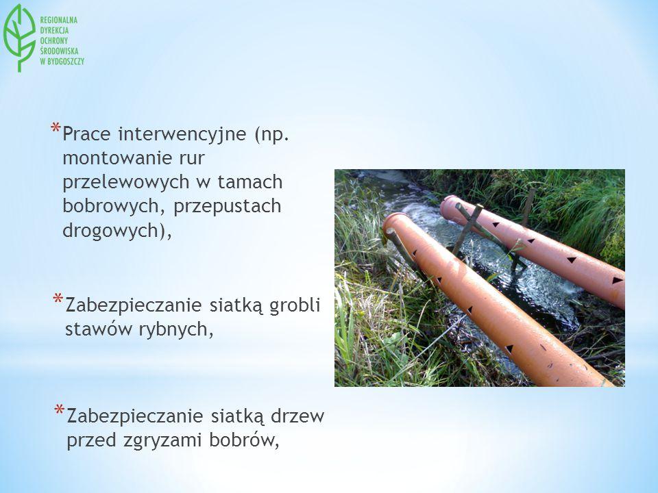 Prace interwencyjne (np