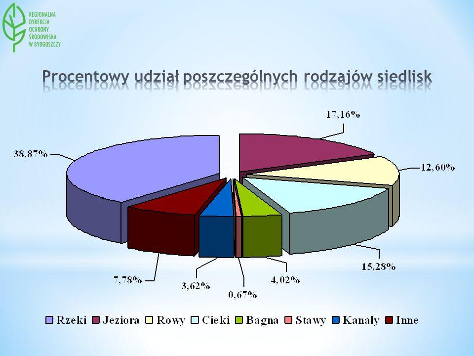Procentowy udział poszczególnych rodzajów siedlisk