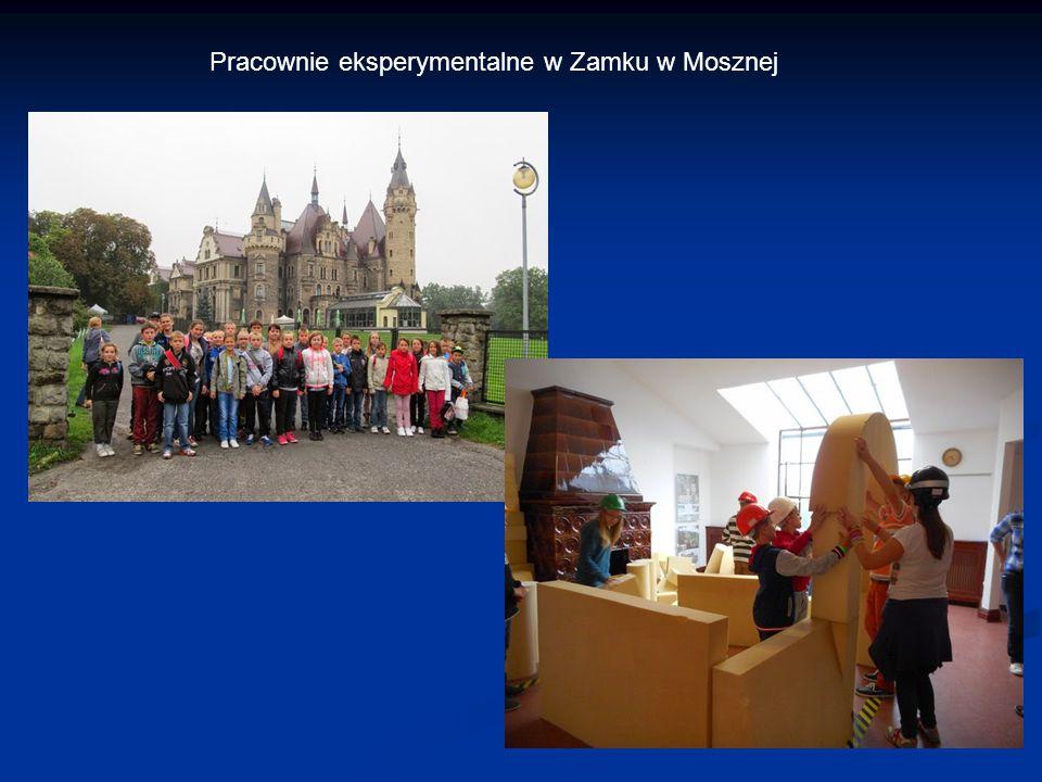 Pracownie eksperymentalne w Zamku w Mosznej
