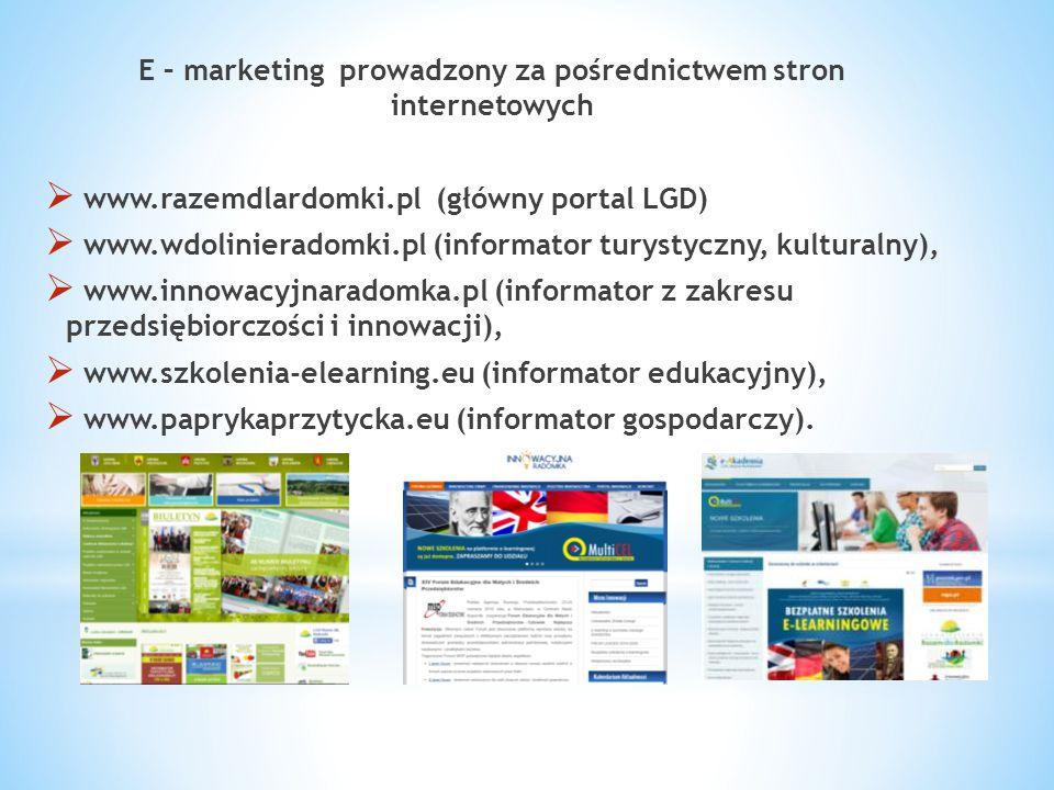 E – marketing prowadzony za pośrednictwem stron internetowych