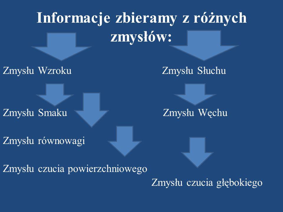 Informacje zbieramy z różnych zmysłów:
