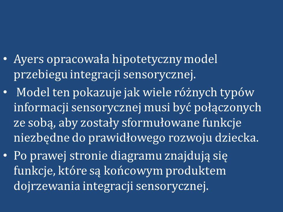 Ayers opracowała hipotetyczny model przebiegu integracji sensorycznej.