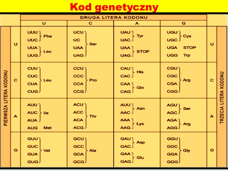Kod genetyczny