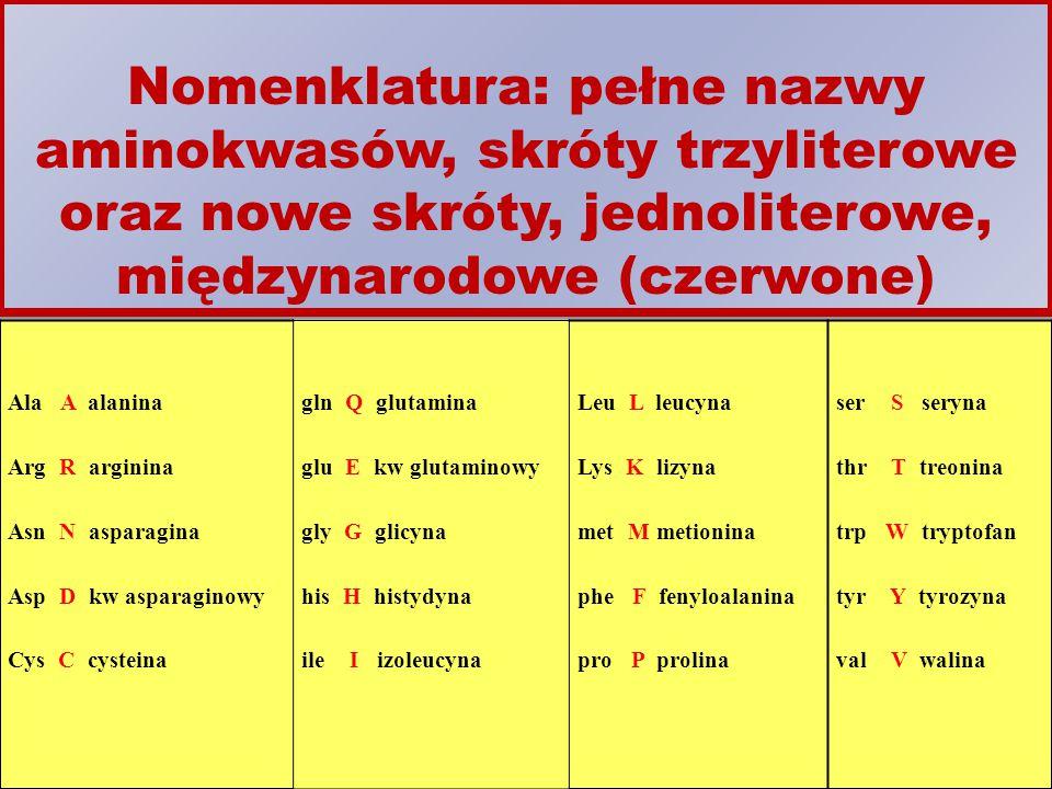 Nomenklatura: pełne nazwy aminokwasów, skróty trzyliterowe oraz nowe skróty, jednoliterowe, międzynarodowe (czerwone)