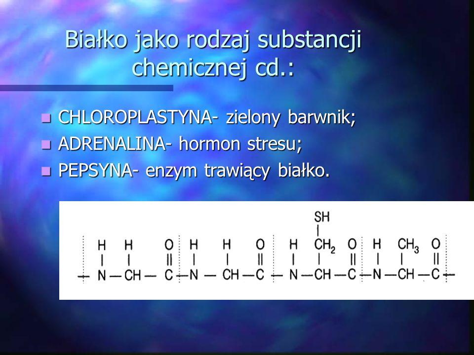 Białko jako rodzaj substancji chemicznej cd.: