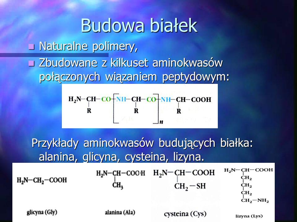 Budowa białek Naturalne polimery,