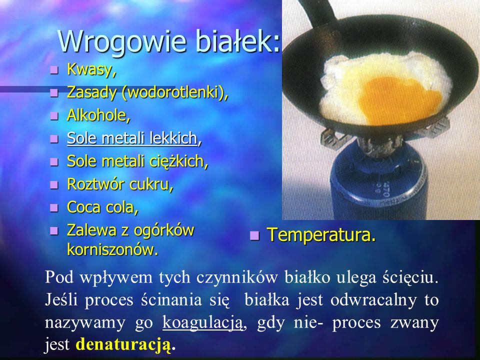 Wrogowie białek: Temperatura.