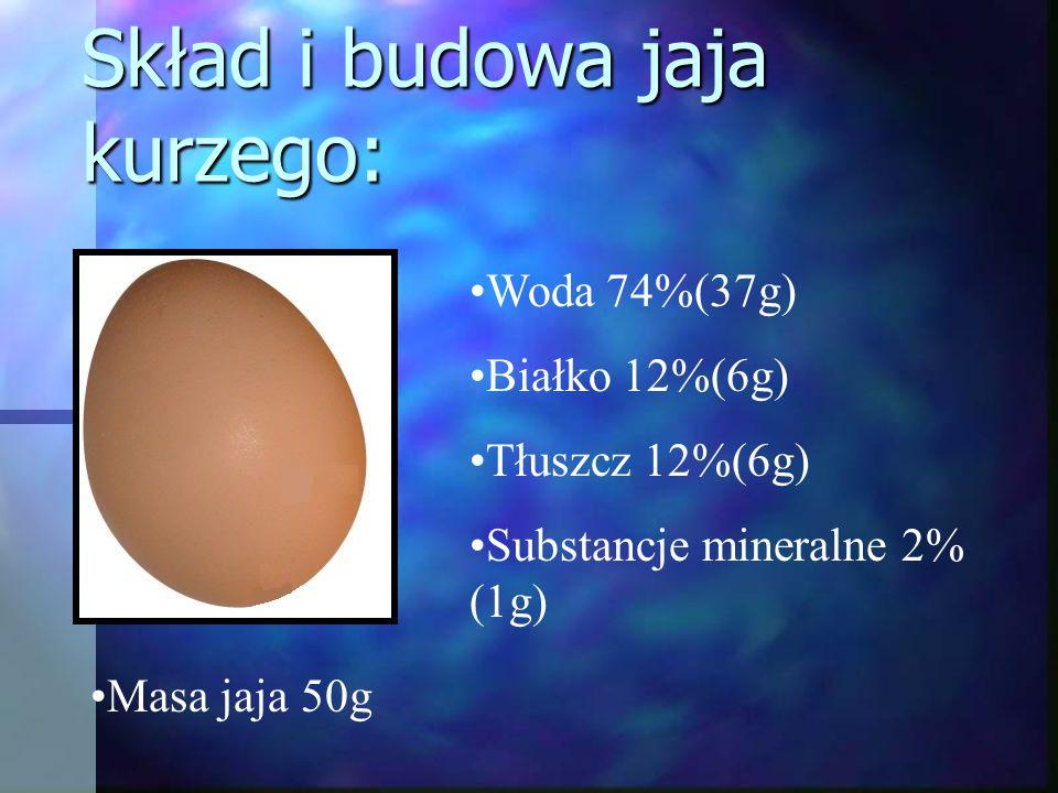Skład i budowa jaja kurzego: