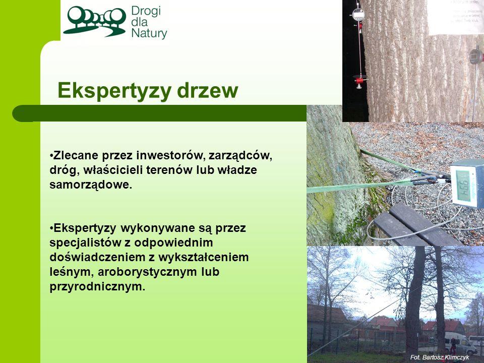Ekspertyzy drzew Zlecane przez inwestorów, zarządców, dróg, właścicieli terenów lub władze samorządowe.