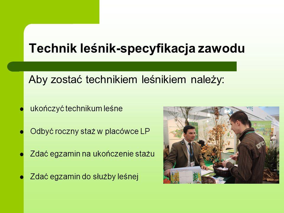 Technik leśnik-specyfikacja zawodu