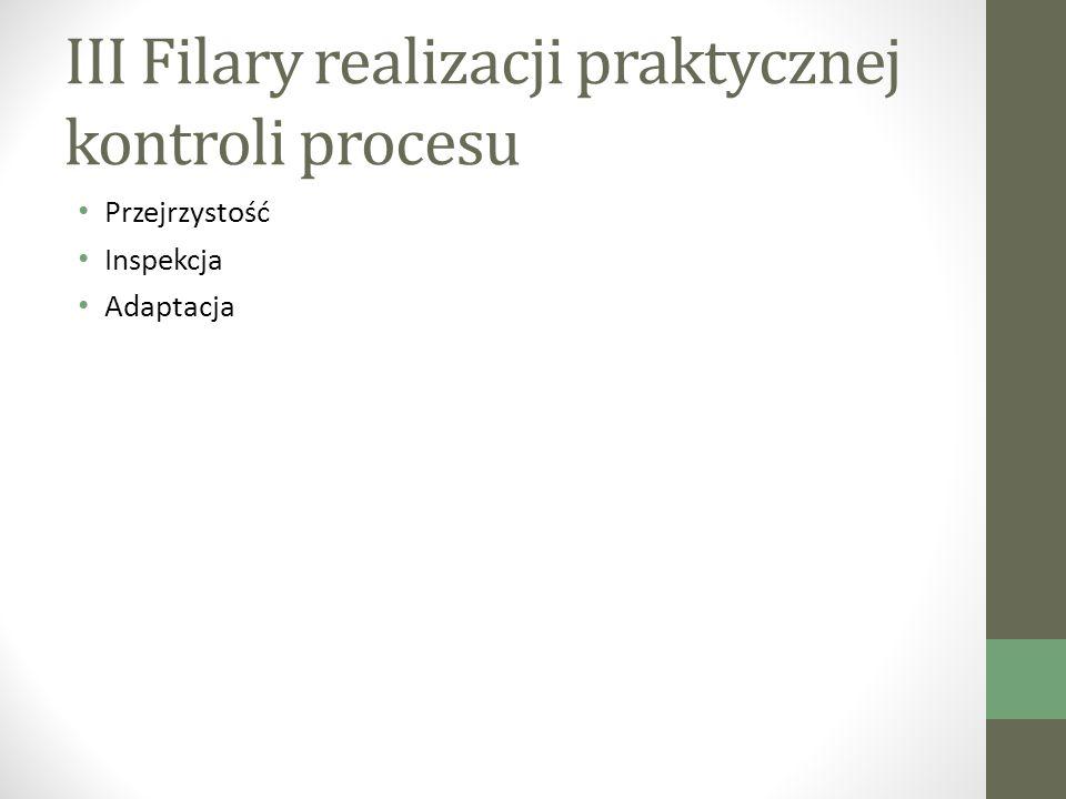 III Filary realizacji praktycznej kontroli procesu