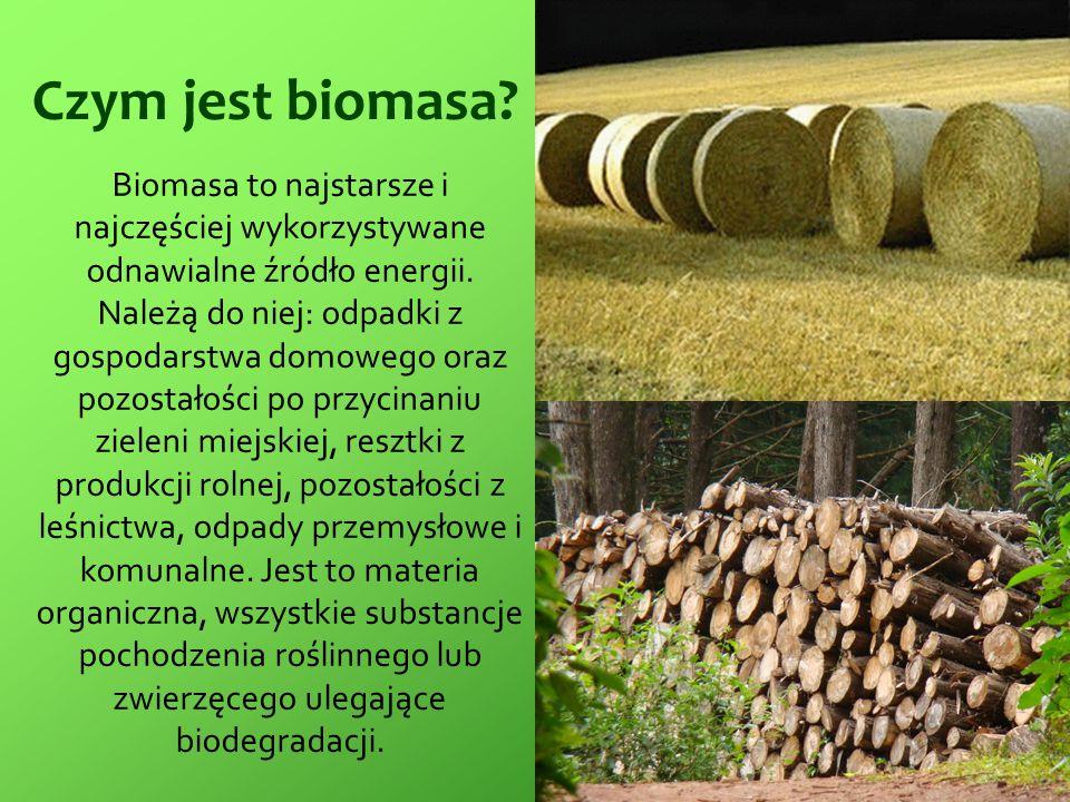 Czym jest biomasa