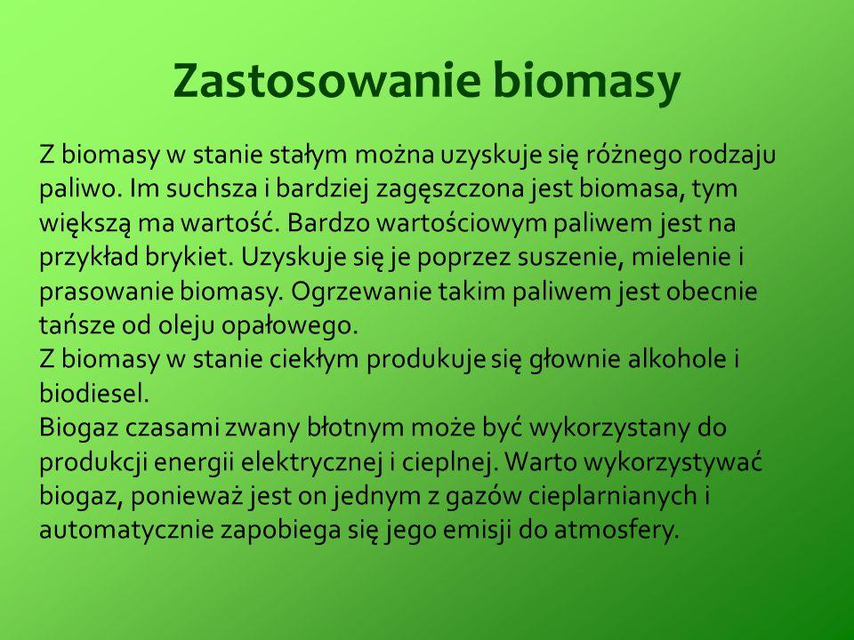 Zastosowanie biomasy