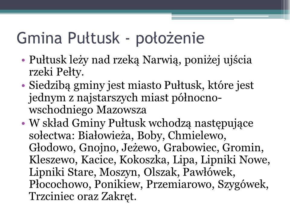 Gmina Pułtusk - położenie
