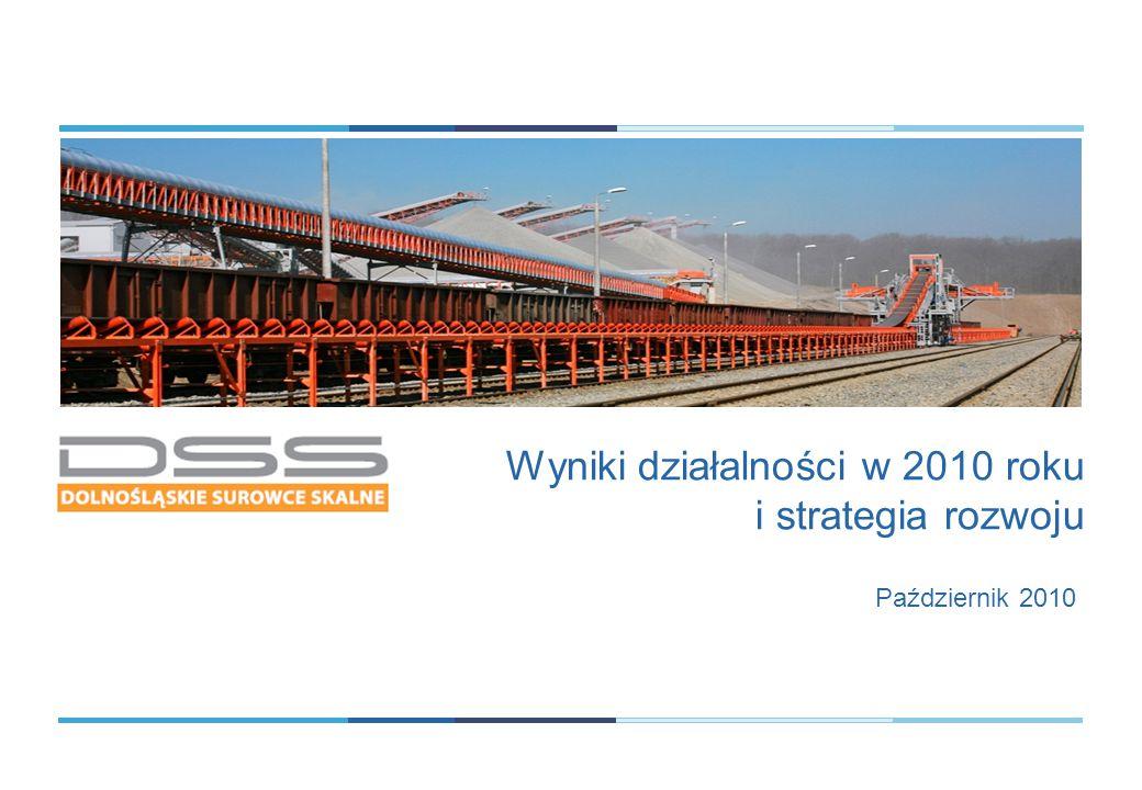 Wyniki działalności w 2010 roku i strategia rozwoju