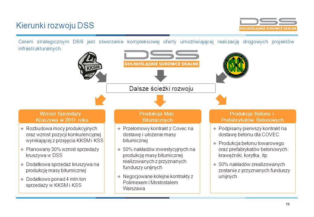 Kierunki rozwoju DSS Dalsze ścieżki rozwoju