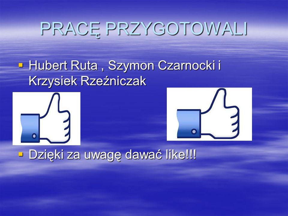 PRACĘ PRZYGOTOWALI Hubert Ruta , Szymon Czarnocki i Krzysiek Rzeźniczak.