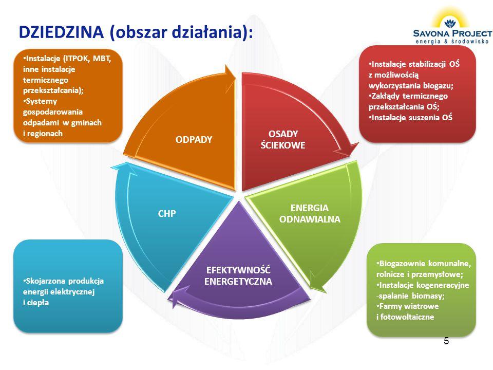 DZIEDZINA (obszar działania):