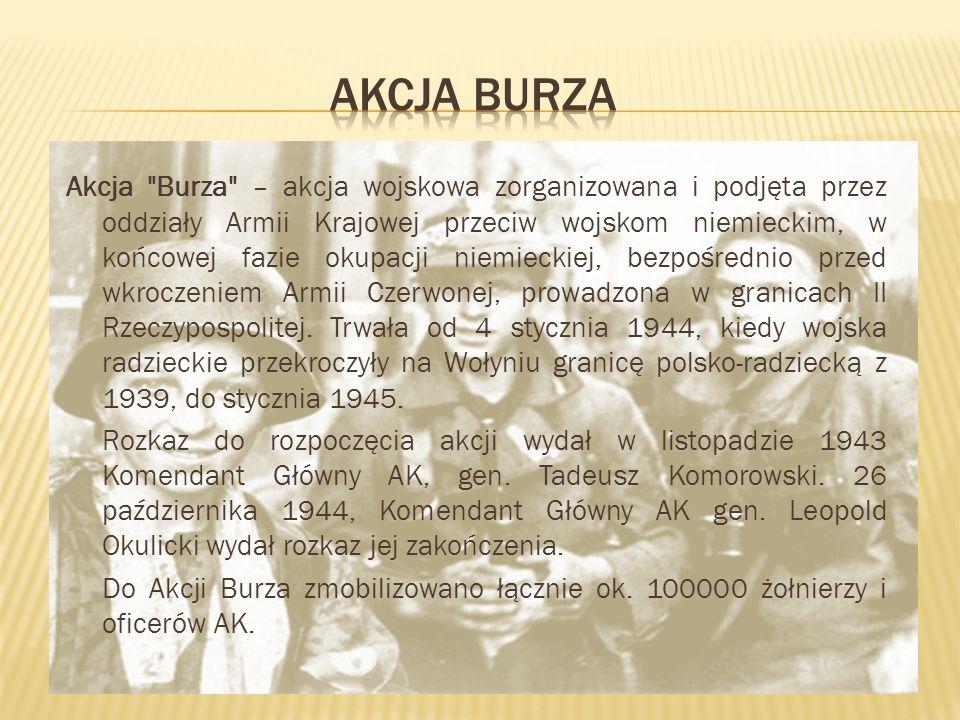 AKCJA BURZA