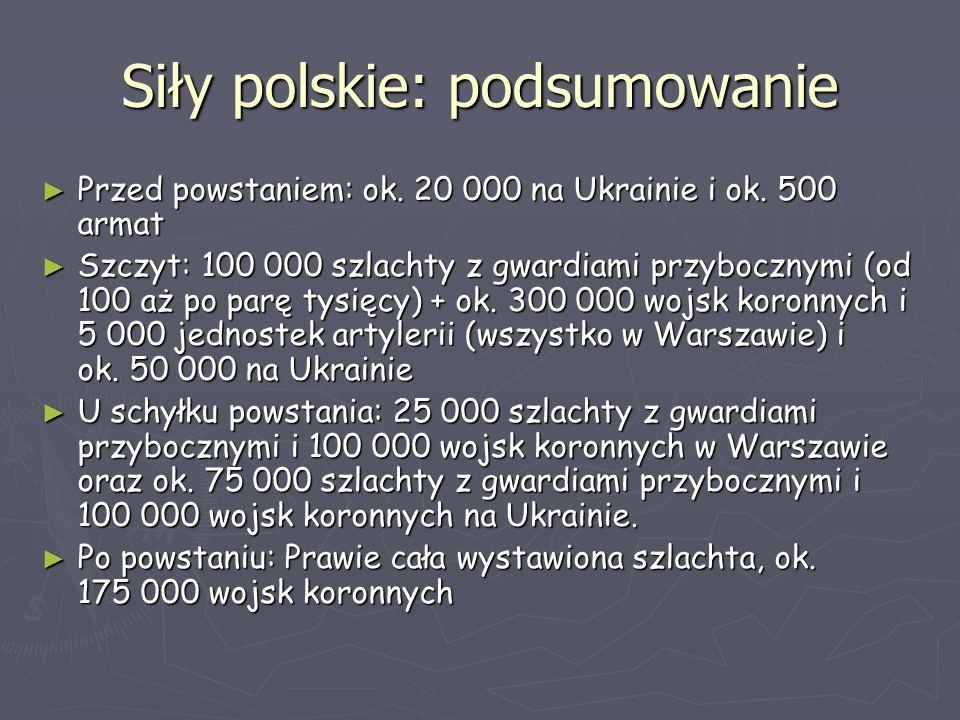Siły polskie: podsumowanie