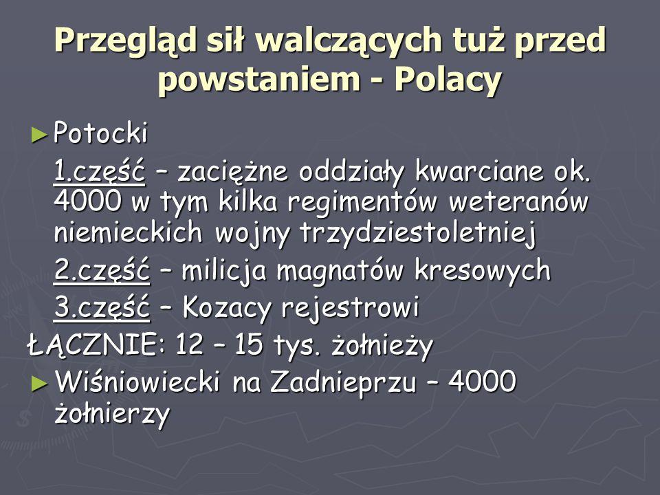 Przegląd sił walczących tuż przed powstaniem - Polacy
