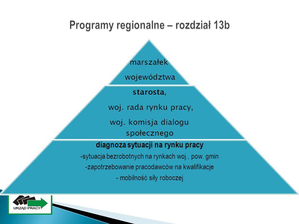 Programy regionalne – rozdział 13b