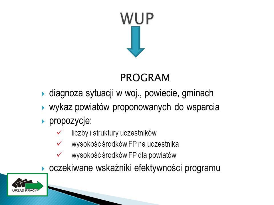 WUP PROGRAM diagnoza sytuacji w woj., powiecie, gminach