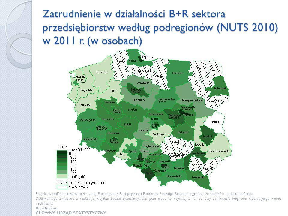 Zatrudnienie w działalności B+R sektora przedsiębiorstw według podregionów (NUTS 2010) w 2011 r. (w osobach)