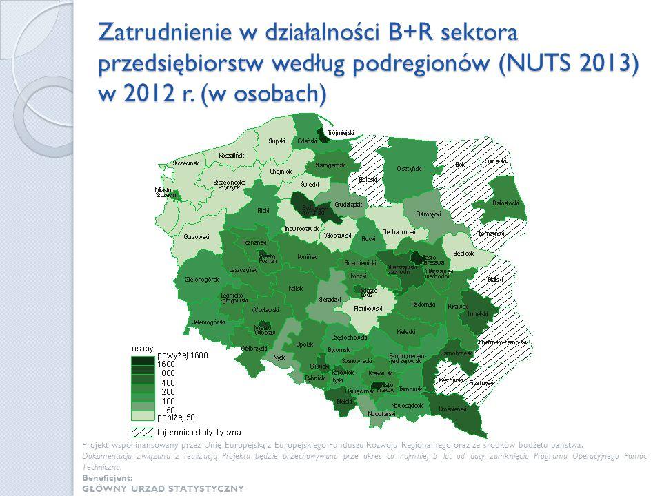 Zatrudnienie w działalności B+R sektora przedsiębiorstw według podregionów (NUTS 2013) w 2012 r. (w osobach)