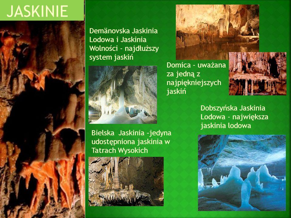 JASKINIE Demänovska Jaskinia Lodowa i Jaskinia Wolności - najdłuższy system jaskiń. Domica - uważana za jedną z najpiękniejszych jaskiń.