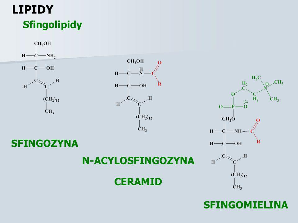 LIPIDY Sfingolipidy SFINGOZYNA N-ACYLOSFINGOZYNA CERAMID SFINGOMIELINA