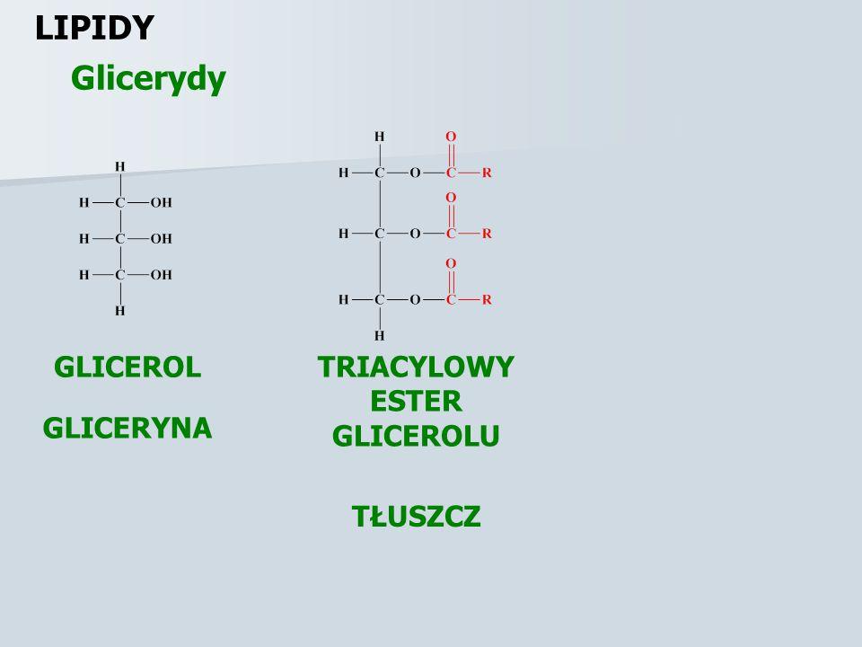 LIPIDY Glicerydy GLICEROL TRIACYLOWY ESTER GLICEROLU GLICERYNA TŁUSZCZ
