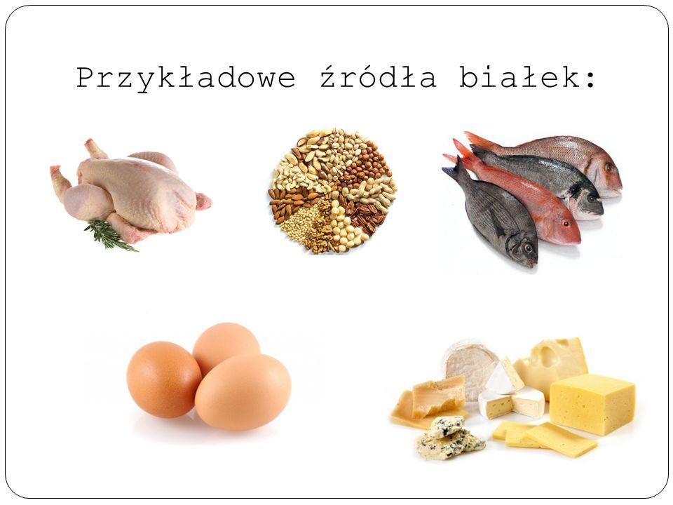 Przykładowe źródła białek: