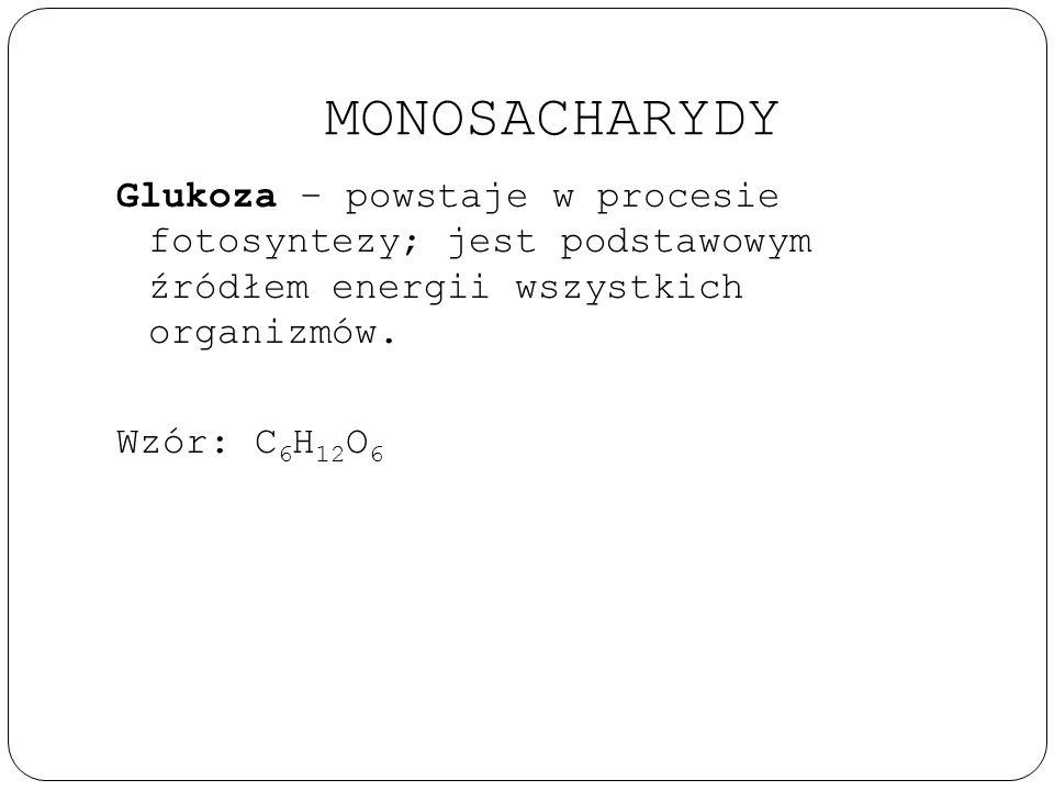 MONOSACHARYDY Glukoza – powstaje w procesie fotosyntezy; jest podstawowym źródłem energii wszystkich organizmów.