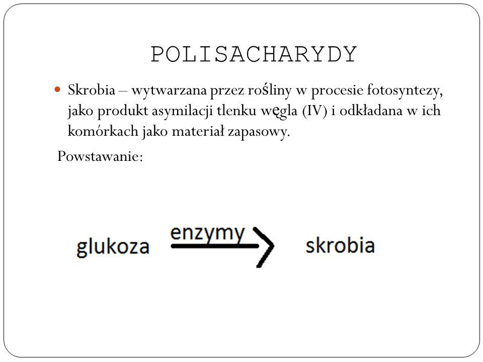 POLISACHARYDY