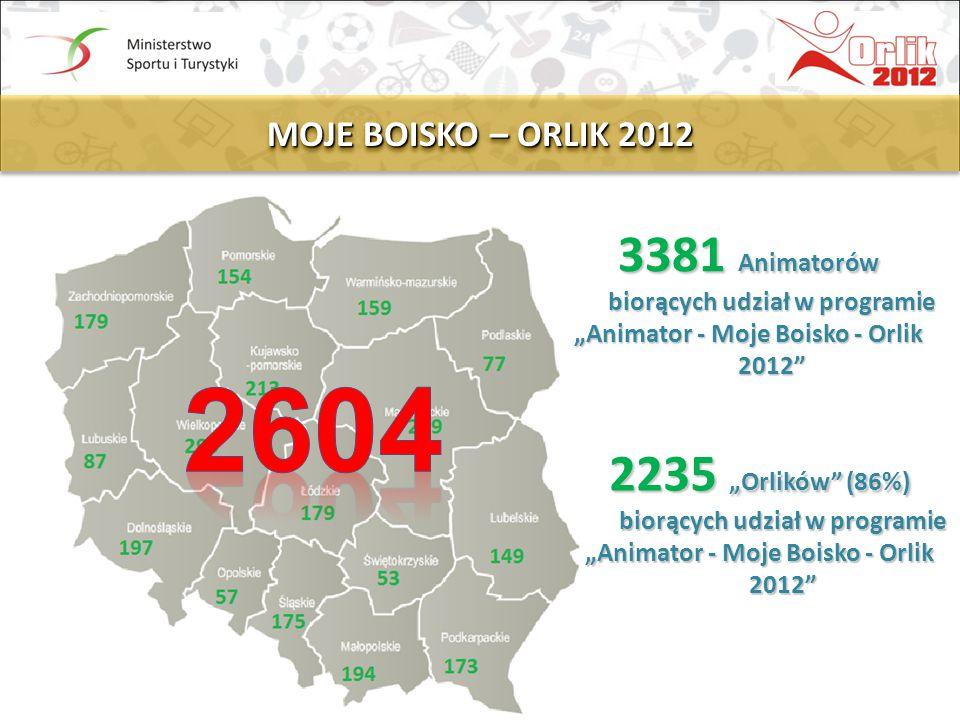 2604 3381 Animatorów biorących udział w programie