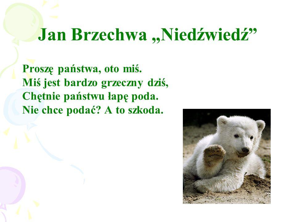"""Jan Brzechwa """"Niedźwiedź"""