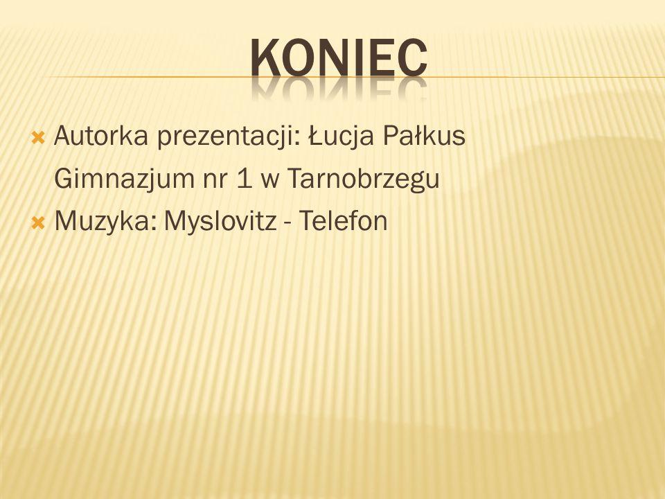 koniec Autorka prezentacji: Łucja Pałkus Gimnazjum nr 1 w Tarnobrzegu