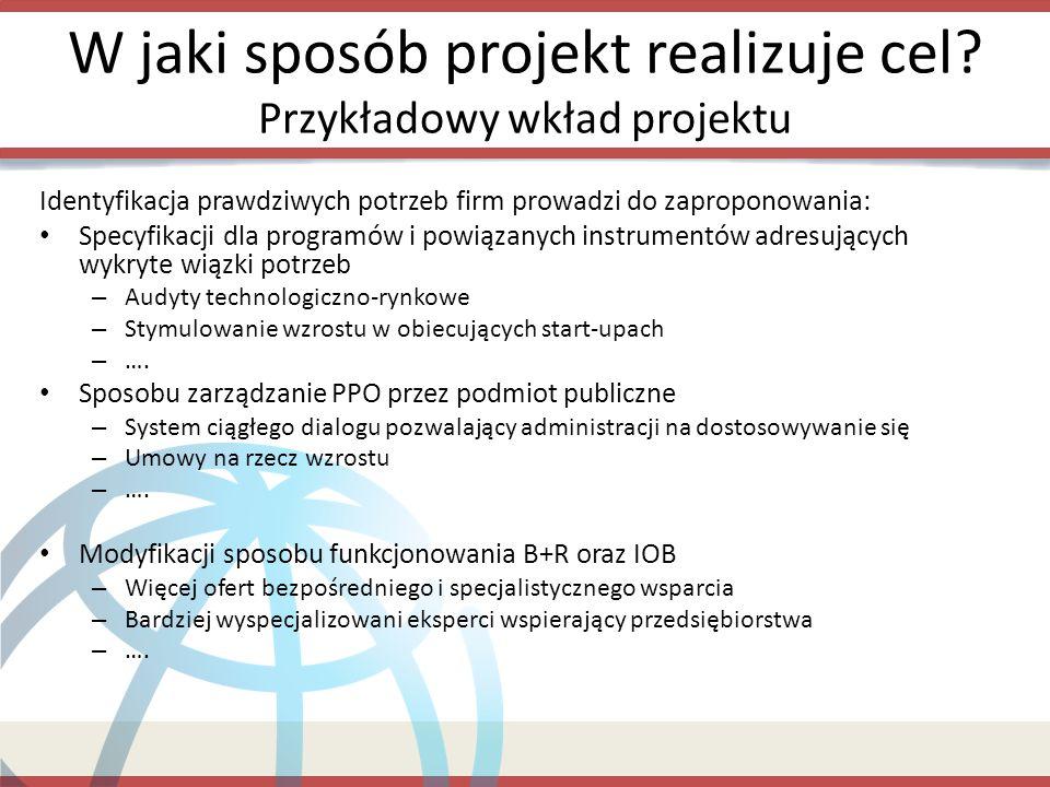 W jaki sposób projekt realizuje cel Przykładowy wkład projektu