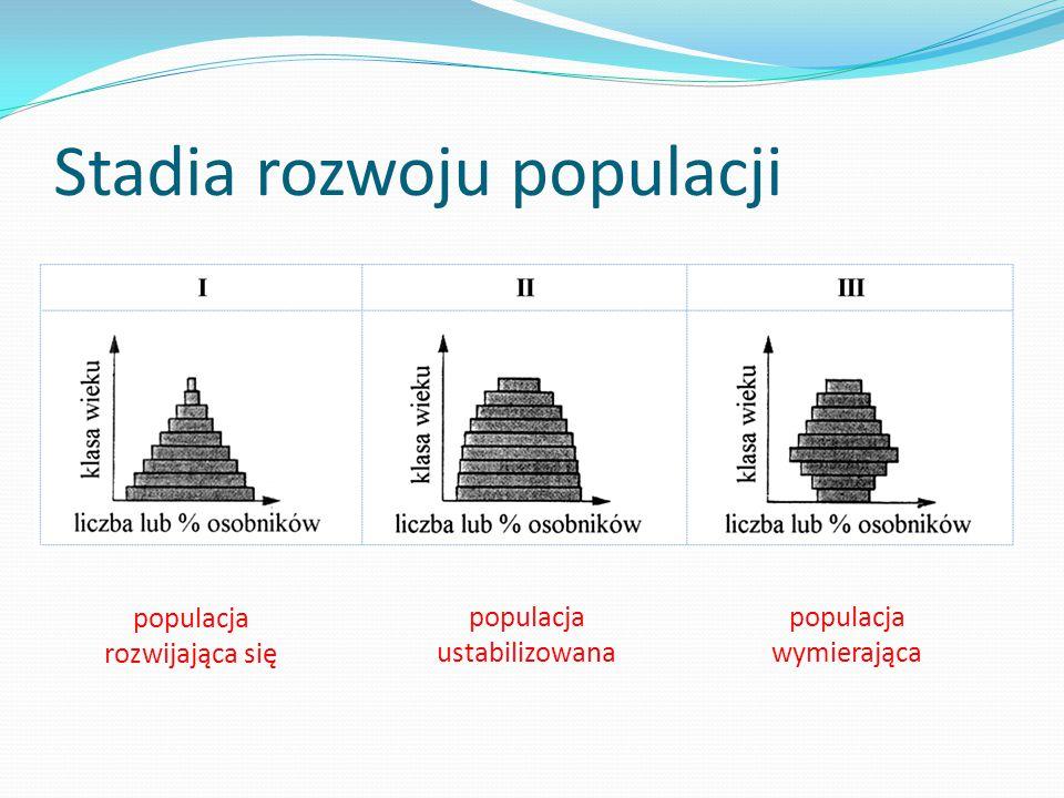 Stadia rozwoju populacji
