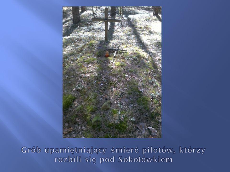 Grób upamiętniający śmierć pilotów, którzy rozbili się pod Sokołówkiem