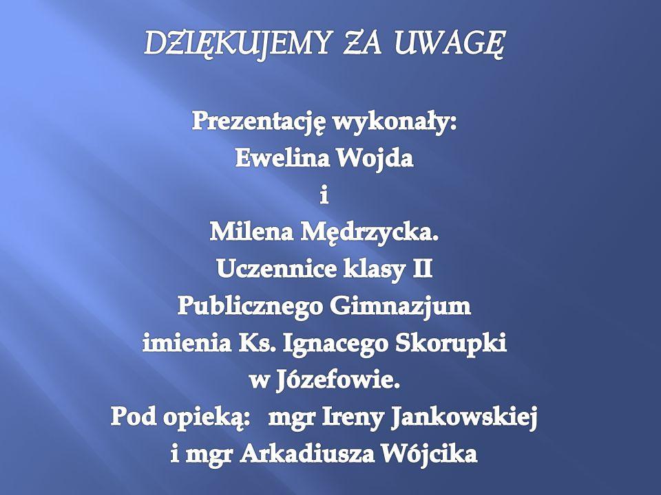 DZIĘKUJEMY ZA UWAGĘ Prezentację wykonały: Ewelina Wojda i