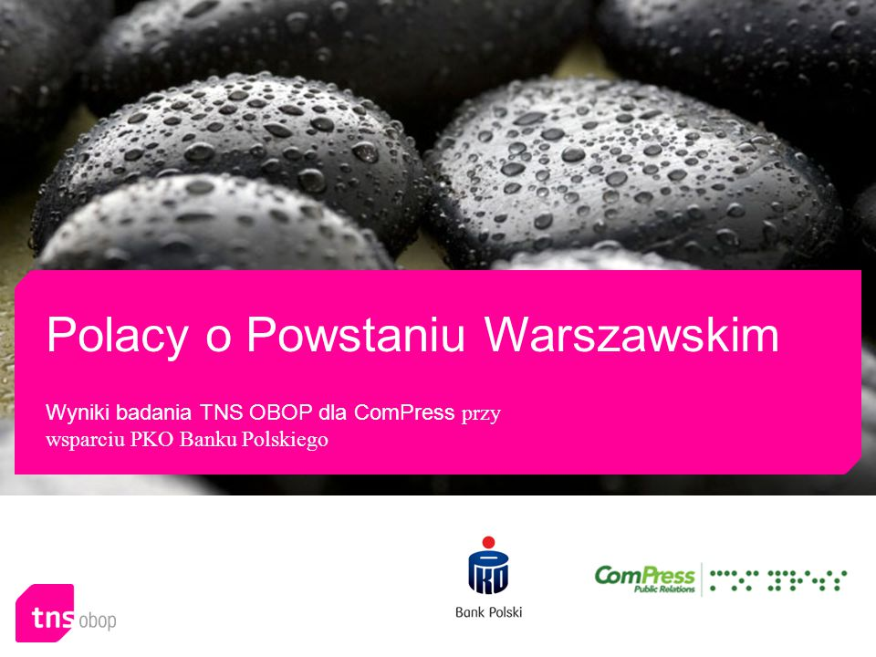 Polacy o Powstaniu Warszawskim